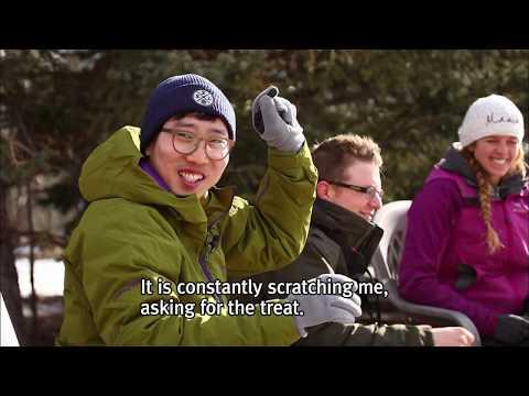 유튜브 EBS 다큐 World Theme Travel Journey Through Canada, a Winter Wonderland Part 2
