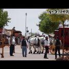 유튜브동영상 EBS 다큐 세계테마기행 미국 서부 지질학기행 1~4부